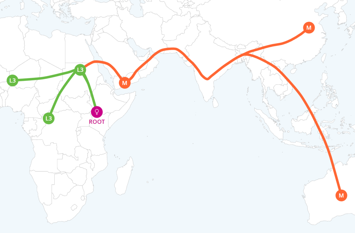 DNA mother migration map