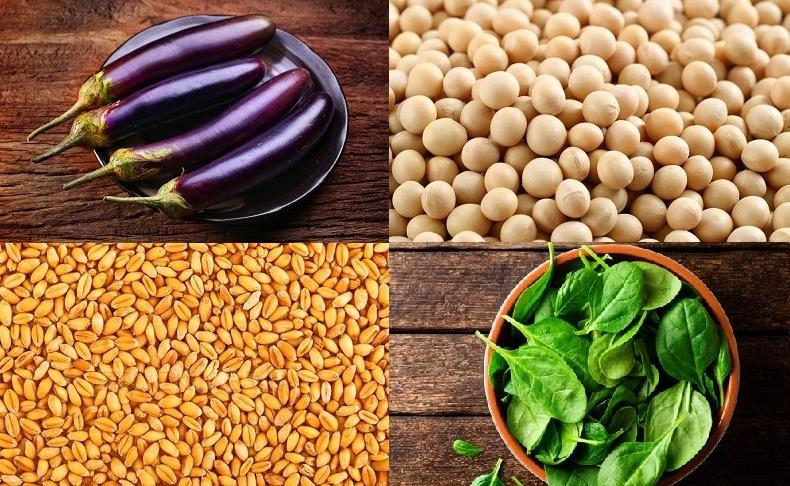 意外な食べ物にも含まれている?避けるべき4つの反栄養素