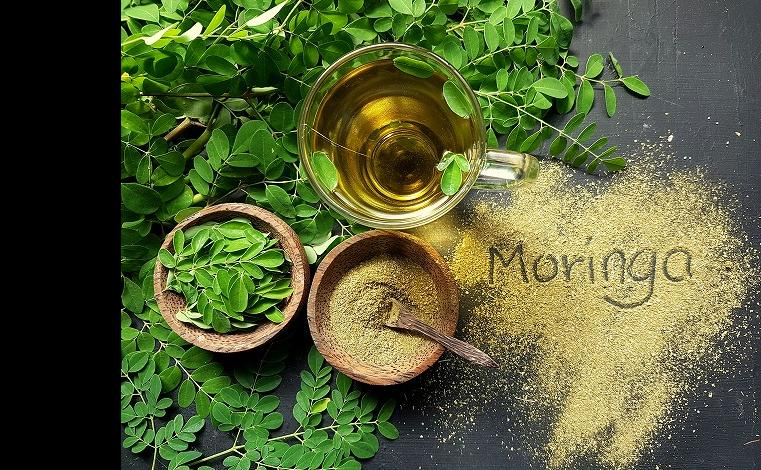 アーユルヴェーダのスーパーフード、モリンガは栄養素の宝石箱。