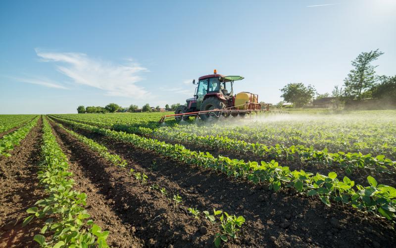 残留農薬の危険性。健康被害を避けるためにできること。