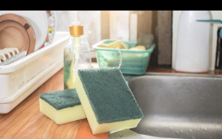 ばい菌の巣窟!? キッチンのスポンジを清潔に保つ方法