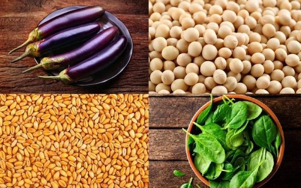 意外な食べ物にも含まれている?避けるべき反栄養素4つ
