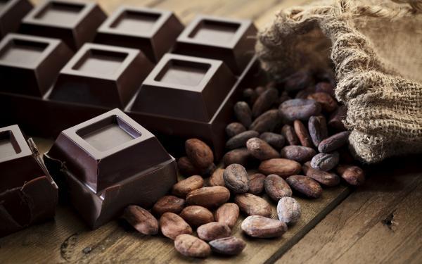 チョコレートに秘められた健康効果・効能。4000年愛される理由。