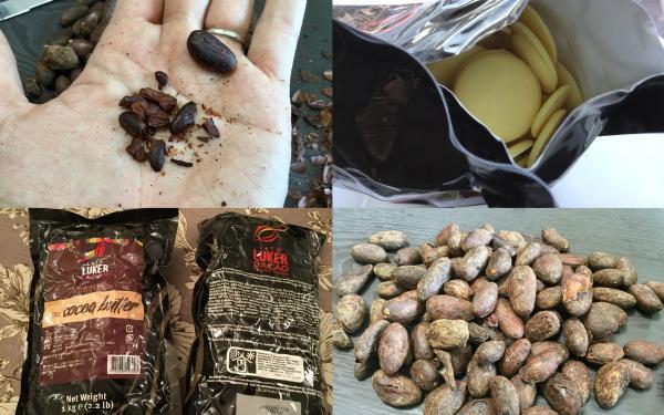 カカオって奥が深い!カカオ豆に含まれるカカオバターについて詳しく調べてみました!