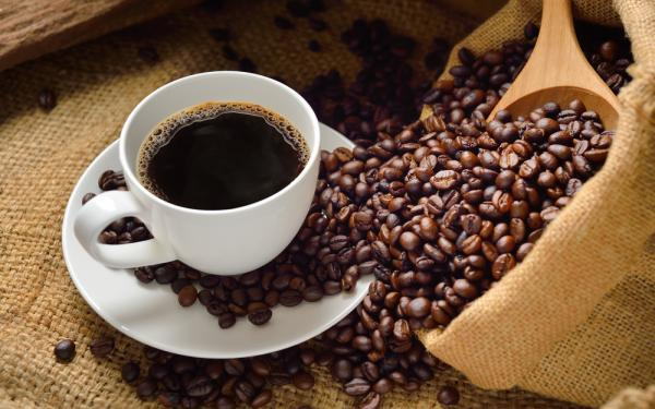 コーヒーのベネフィット 健康効果