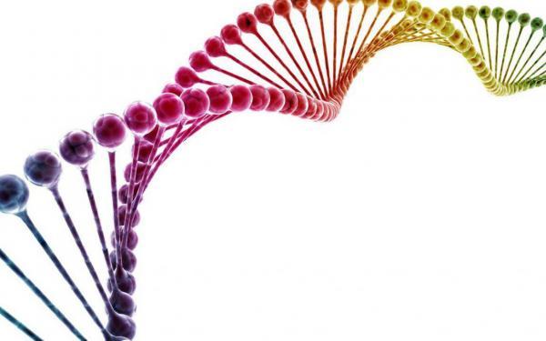 自分は遺伝子が悪いから、とあきらめていませんか?環境の変化が遺伝子レベルでの変化を及ぼすエピジェネティクスの凄さ