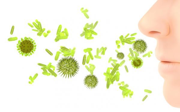 すぐできるバイオハックシリーズ  ジーフィー式の意外な花粉症対策とは?