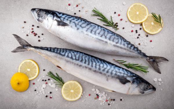 オメガ3などの栄養の優れた補給源の魚。でも安全に食べるコツは?