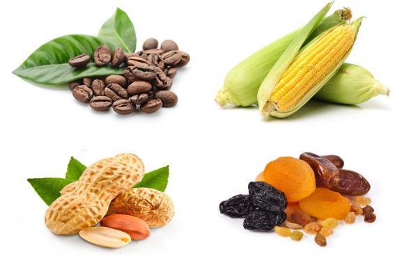 食べ物に含まれるカビ毒と生体アミンの基礎知識